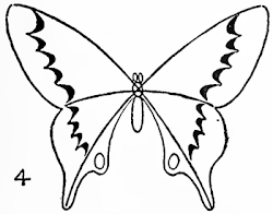 butterfly drawing easy butterflies draw step drawings methods tutorials drawinghowtodraw steps paint sketches sketch designs wings статьи источник tattoo discover