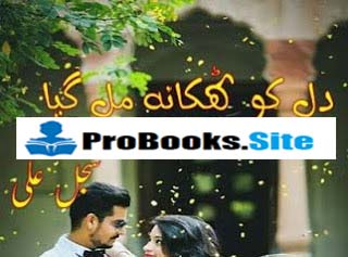 Dil Ko Thikana Mil Gaya By Sajal Ali Complete Pdf Free Download and Read Online.