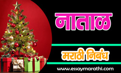 Christmas-Essay-in-Marathi