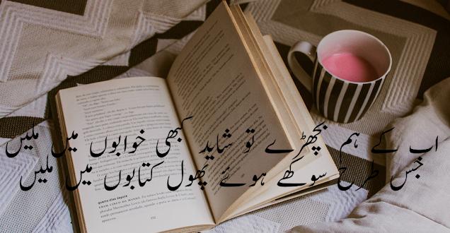 Ab ke hum bichray tou shayed kabhi khawabon mie milain By Ahmad Faraz - 2 lines urdu poetry