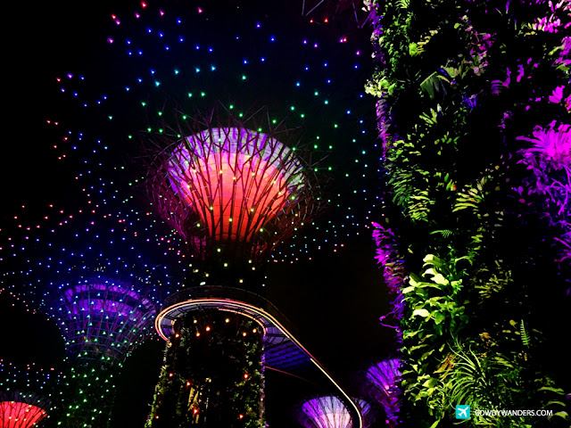 bowdywanders.com Singapore Travel Blog Philippines Photo :: Singapore :: Garden Rhapsody - Gardens by the Bay On A Starless Night