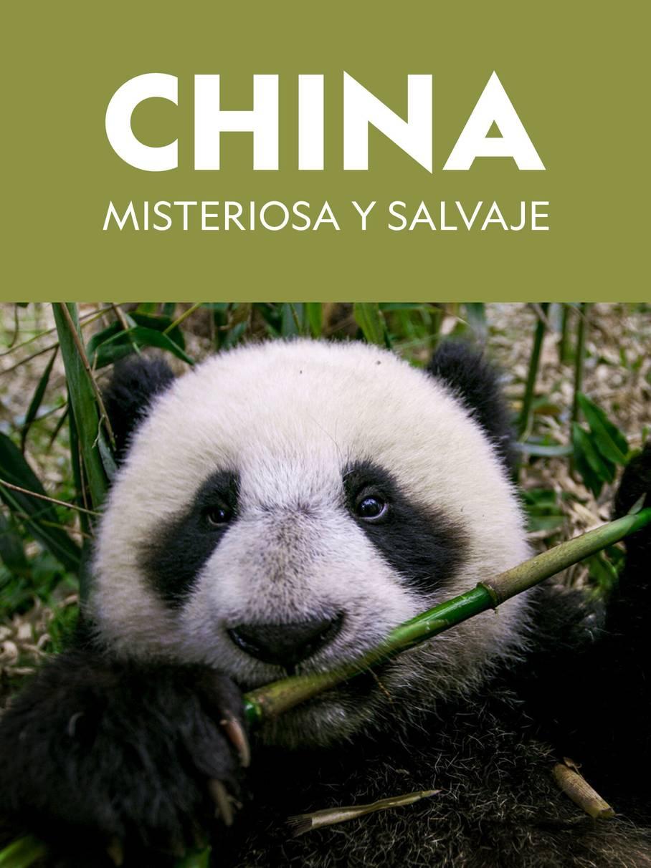 The Hidden Kingdoms of China (2019) Temporada 1 WEB-DL 1080p Latino