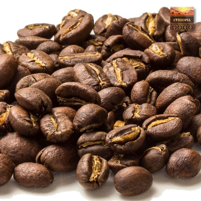 What are the Top 5 Most Aromatic & Tasty Ethiopian Coffee Sorts?