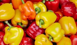 Manfaat Paprika, Bikin Tubuh Lebih Healthy