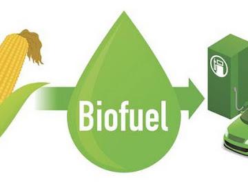 Produksi Biofuel Menyebabkan Kekhawatiran