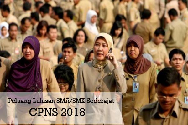 Jabatan CPNS PNS Yang Dapat Di Isi Lulusan SMA SMK Sederajat