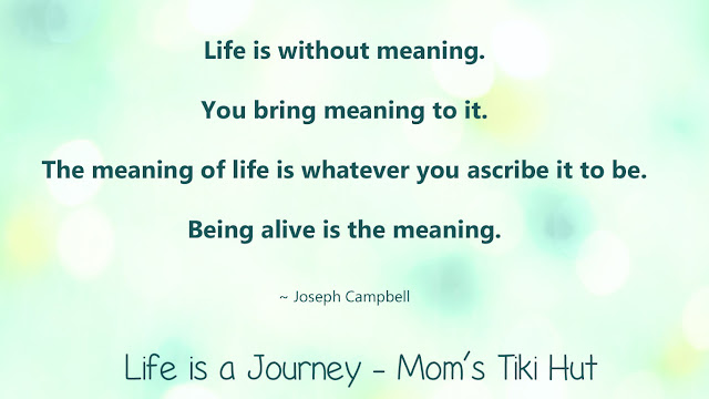 Life with a Meaning