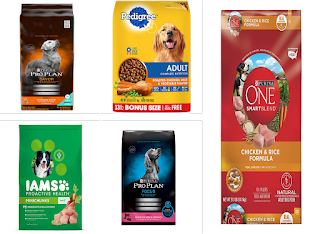 5 Best Dry Food for Dog