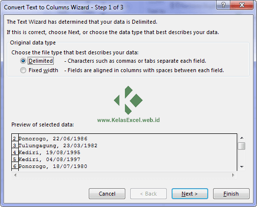 Text to Columns Wizard Excel 1