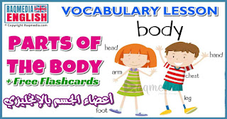 Body parts, english words, learn english kids, learn english speaking, short stories for kids, children stories, English Language (Human Language), English lessons, Human body, Lidské tělo v angličitě, Angličtina pro děti, Slovakia, Austria, Germany, Hungary (Country), Poland (Country), اعضاء جسم الانسان بالانجليزي