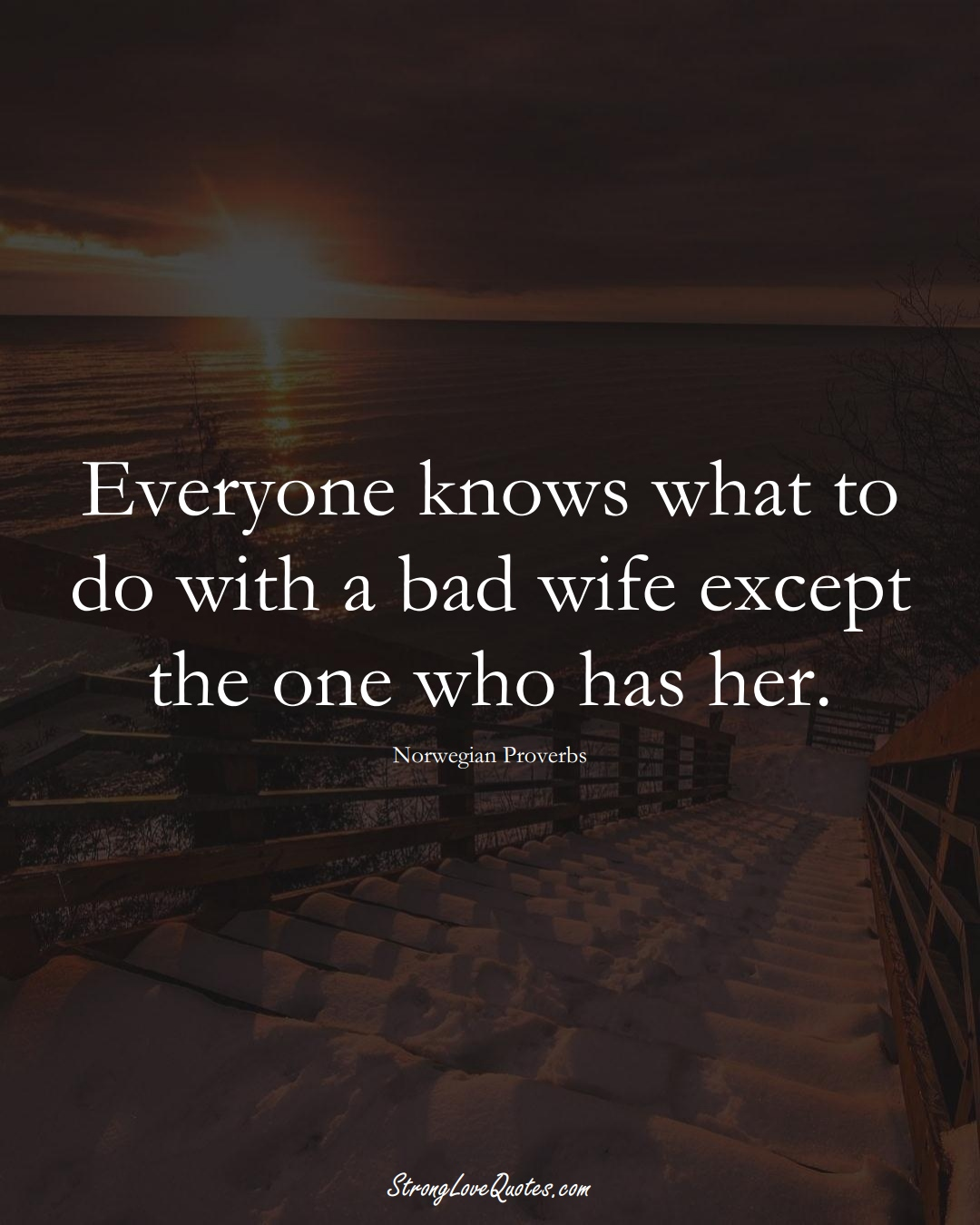 Everyone knows what to do with a bad wife except the one who has her. (Norwegian Sayings);  #EuropeanSayings