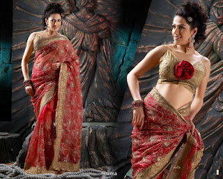 beautiful and sexy sarees for women