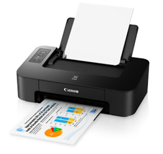 is an elegant in addition to compact printing device alongside Low Canon PIXMA TS207 Drivers Download