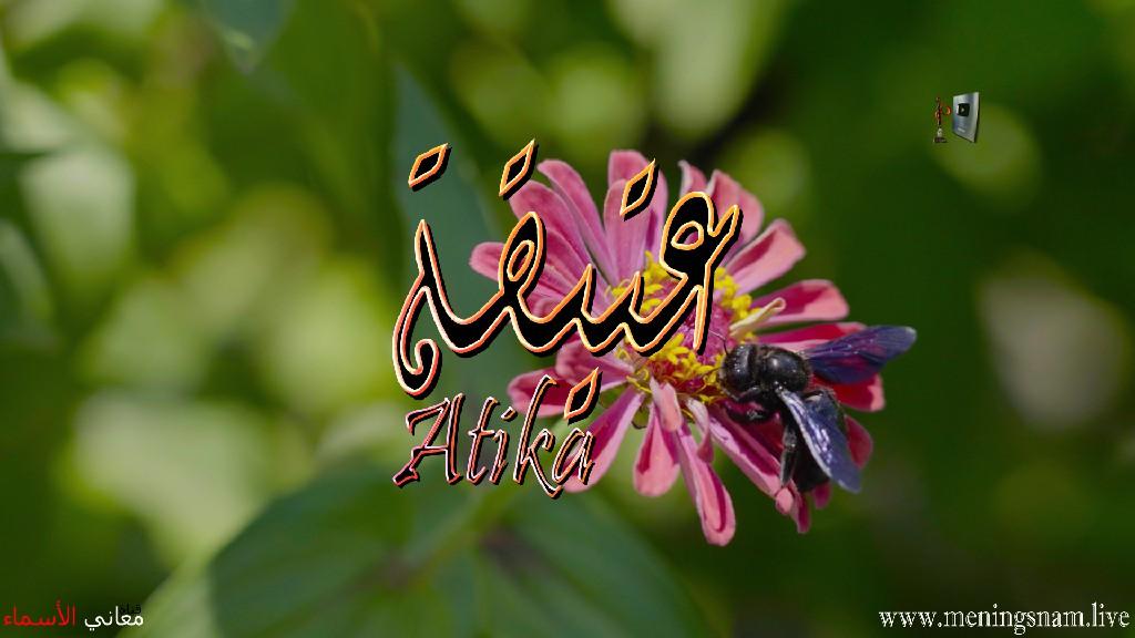 معنى اسم عتيقة وصفات حاملة هذا الاسم Atika