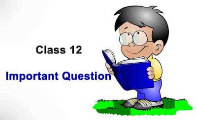 The Last Lesson Summary - CBSE Class 12 English Flamingo