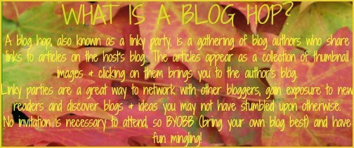 What is a Blog Hop?