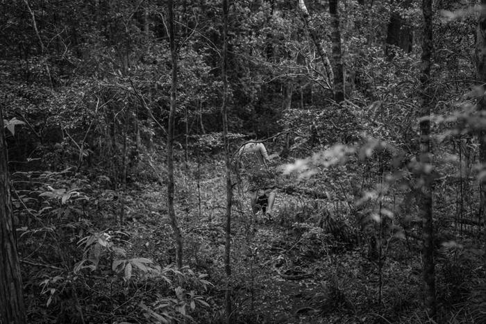 forest walking ben