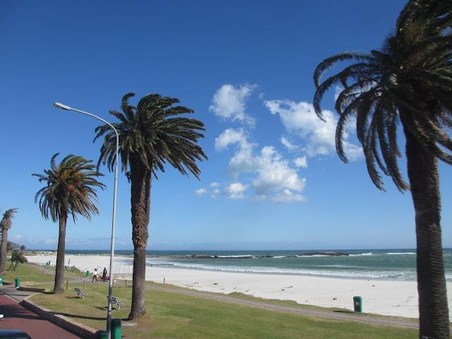 DICAS de viagem para a visitar a CIDADE DO CABO (e os os melhores lugares) | África do Sul