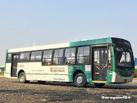 Mini ônibus Coletivo Caio Millenium 3 Viasul Controle Remoto Ipiranga 477p