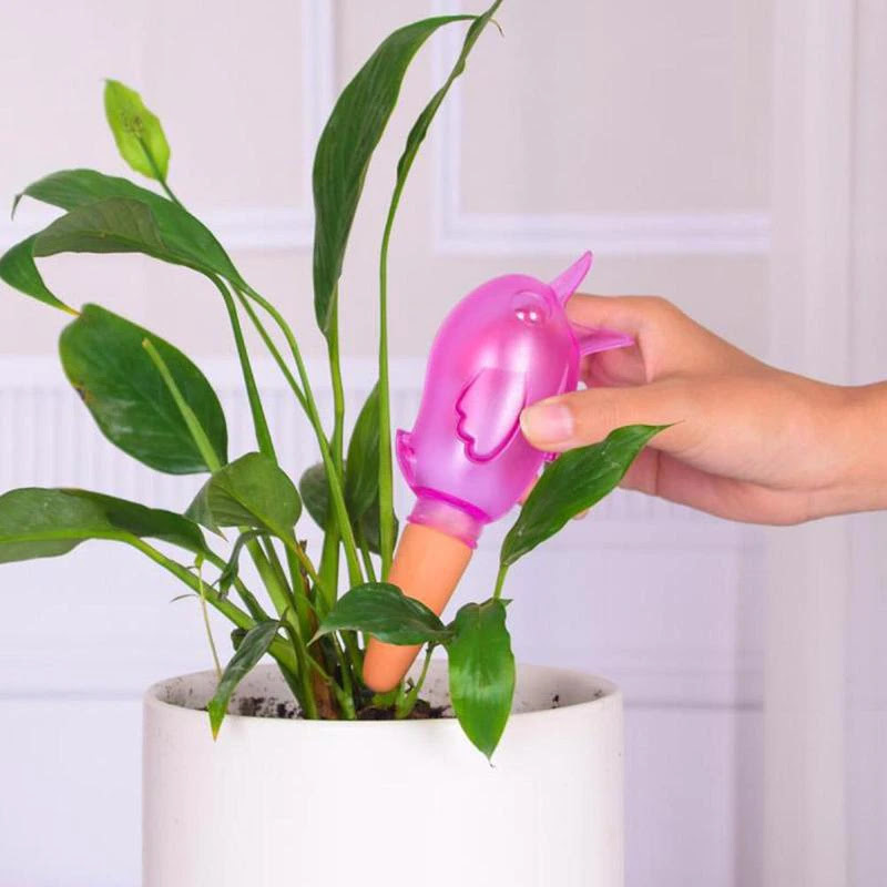 Watering Tool Buy on Amazon and Aliexpress