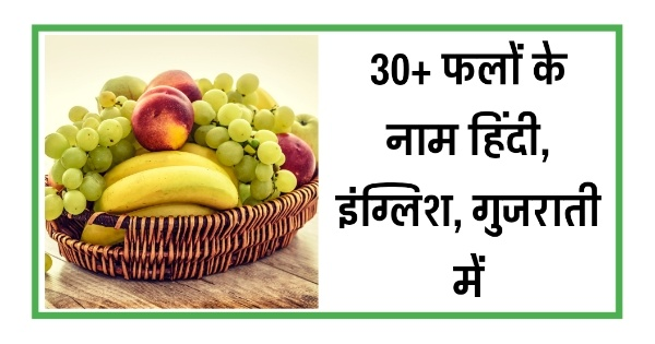Here is useful list of fruits name in hindi and in gujarati and in english with title - फलों के नाम गुजराती में | 32 Fruits Name in Gujarati.