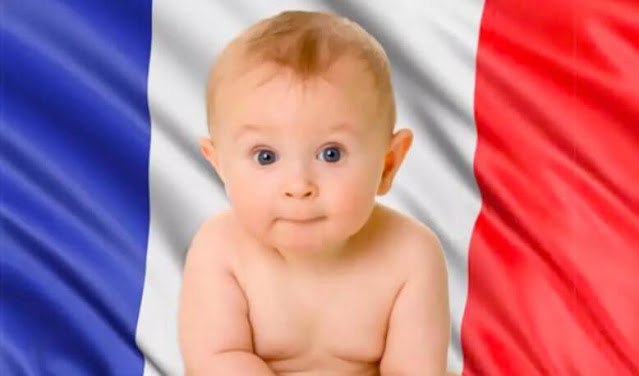 إنجاب طفل في فرنسا : دليل كامل