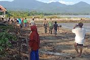 Tahan Laju Abrasi Pantai, Pemerintah Kecamatan Laut Tanam Pohon Waru dan Mangrove di Pantura