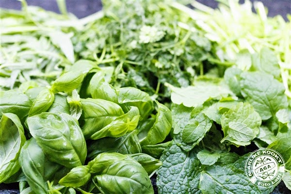 verse groene kruiden