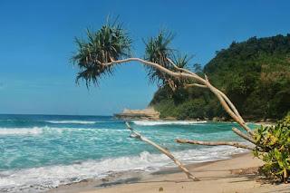 Keindahan Pantai Sanggar Tulungagung
