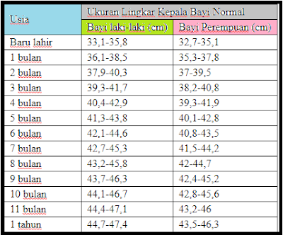 Ukuran lingkar kepala bayi baru lahir berbeda Ukuran Lingkar Kepala Bayi Normal, Laki-Laki Dan Perempuan
