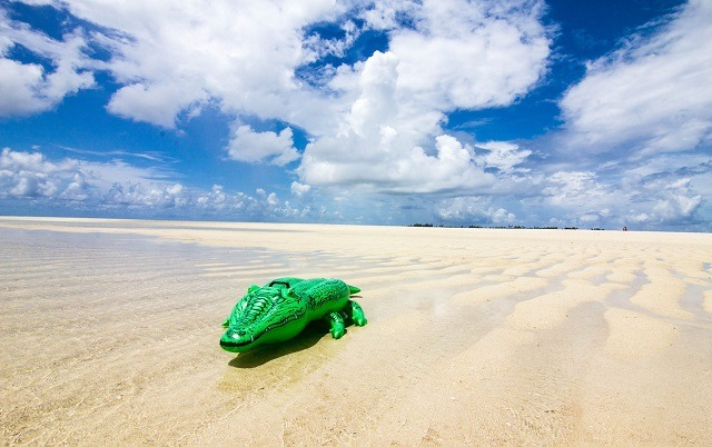 beach crocodile floater