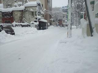 積雪の写真2
