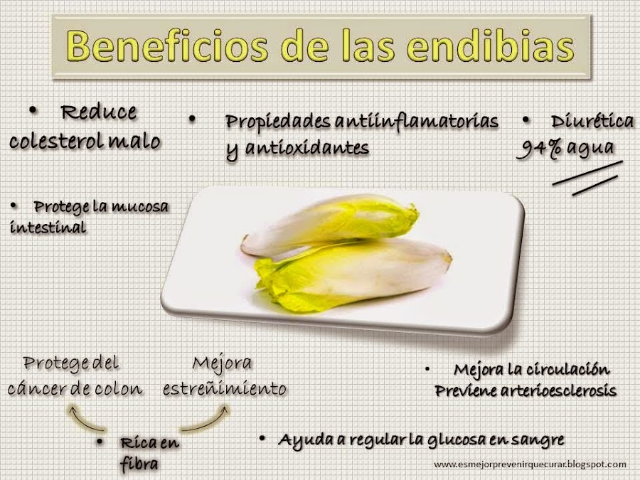 http://esmejorprevenirquecurar.blogspot.com.es/2015/01/la-proteccion-de-las-endibias.html