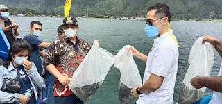 Bupati Samosir Bersama Ketua DPD AMPI Sumut Tabur 25.000 Benih Ikan Nila ke Danau Toba