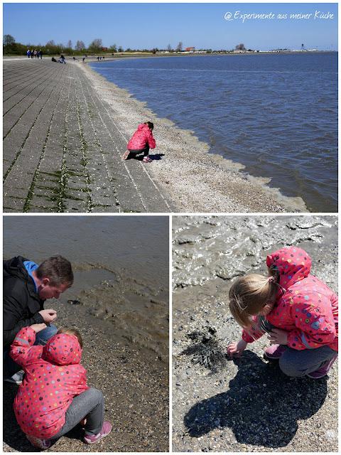 Ein verlängertes Wochenende am Meer | Horumersiel | Nordsee | Reisen | Eamk on Tour