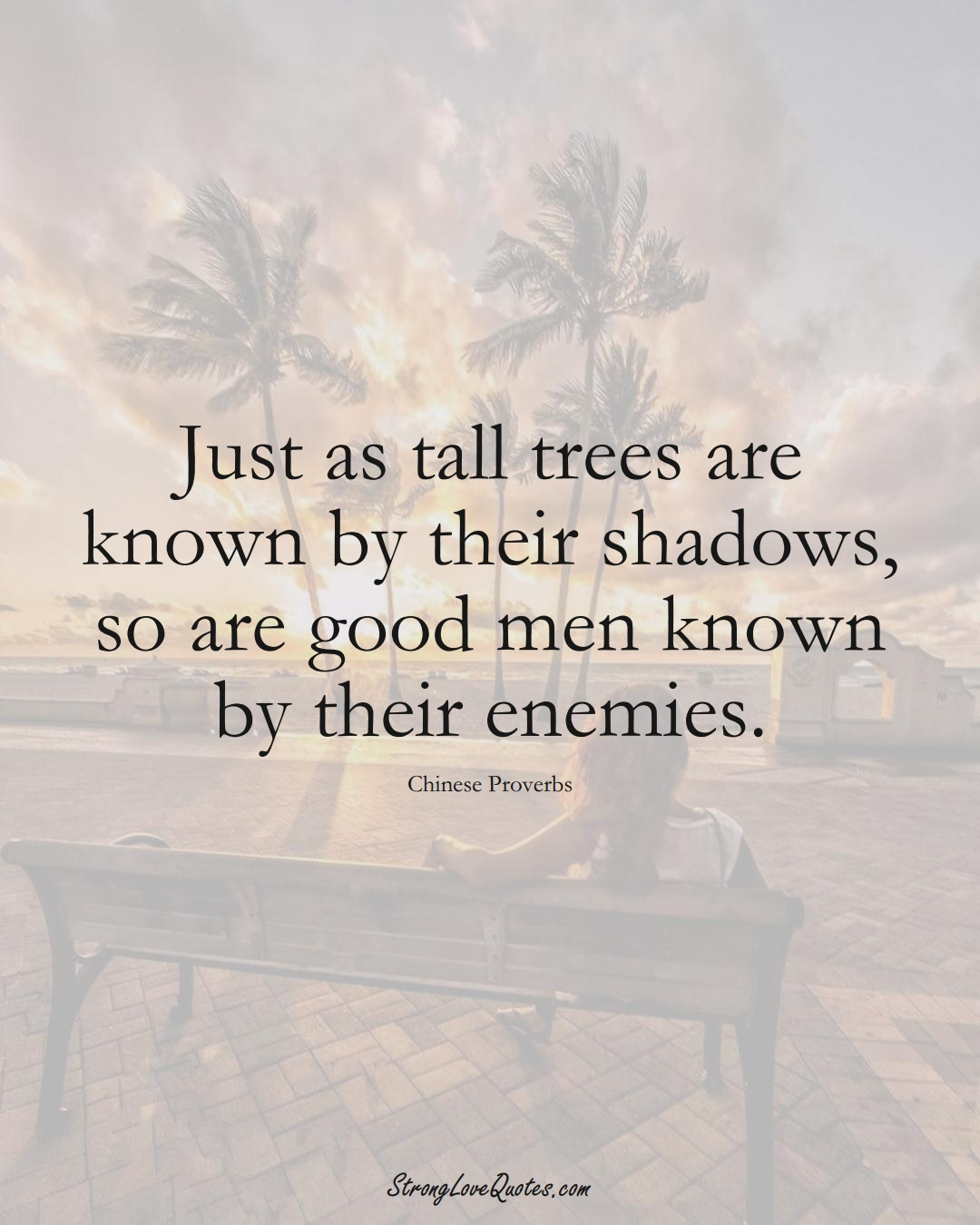 Just as tall trees are known by their shadows, so are good men known by their enemies. (Chinese Sayings);  #AsianSayings