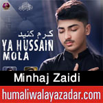 https://aliwalayazadar.blogspot.com/2020/09/minhaj-zaidi-nohay-2021.html