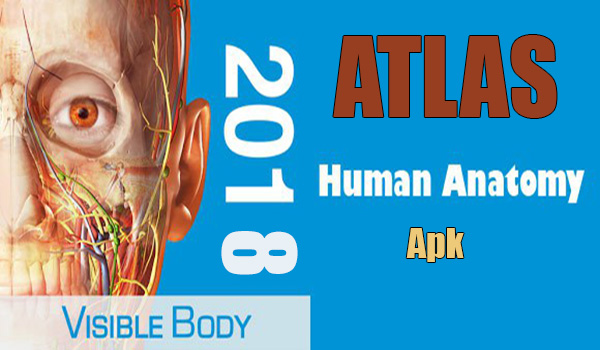 Atlas de anatomía humana 2018: el cuerpo en 3D Apk - TodoAndroid