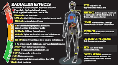 The most common heavy metals, their sources and their effects