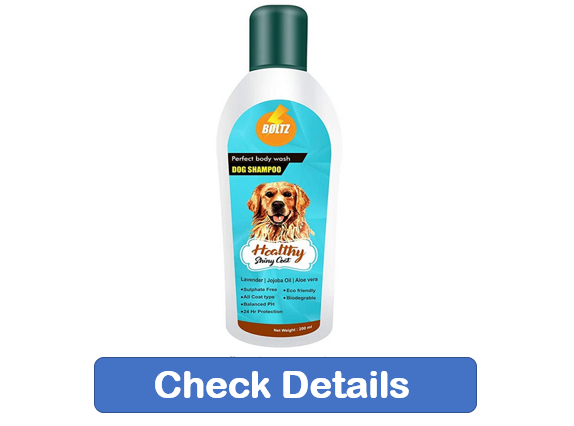 best dog shampoo, Golden Retriever dog shampoo, shampoo for dogs