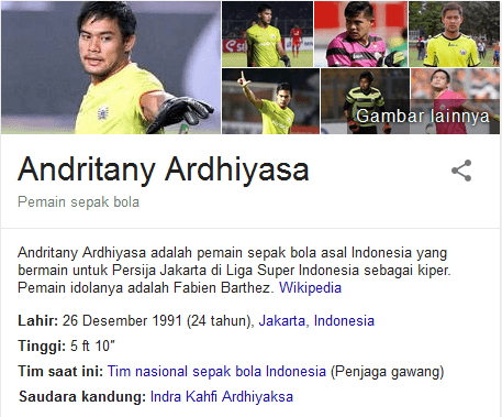 Andritany Ardhiyasa Profil Biografi Pemain Sepak Bola Dunia