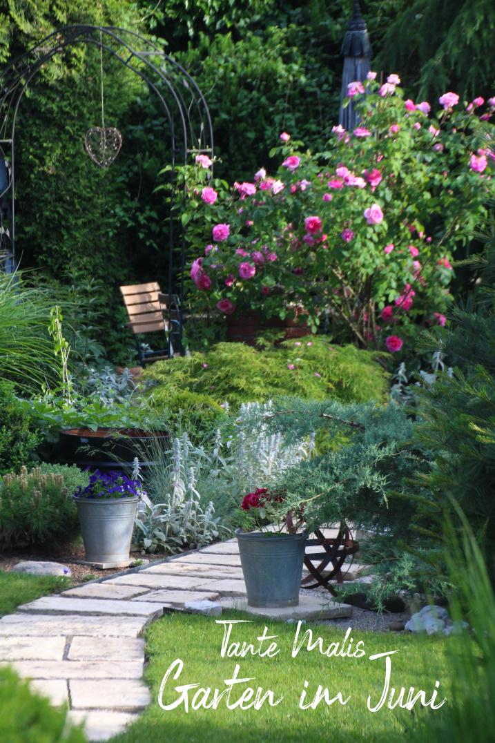 Gartenbeet im Juni mit Rosen, Ahorn, Wollziest, Gräsern, Sitzplatz, Gartenweg