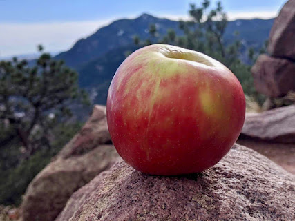 Apple on a rock with a distant mountain peak in the background