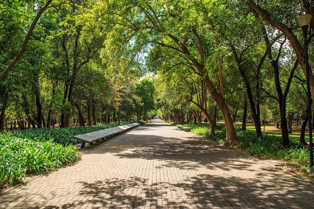 Se encuentra en la delegación Miguel Hidalgo de Ciudad de México y es atravesado por el Paseo de la Reforma, la avenida más emblemática de la capital mexicana.