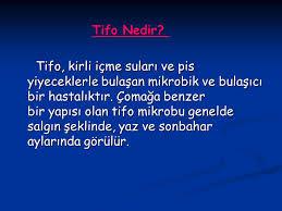 Tifo nedir
