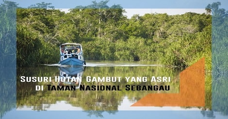 Susuri Sungai Taman Nasional Sebangau