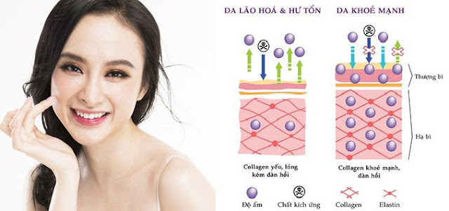 Vai trò của dinh dưỡng đối với làn da