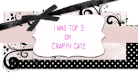 http://craftycatzweeklychallenge.blogspot.com/2015/07/winner-and-top-3.html