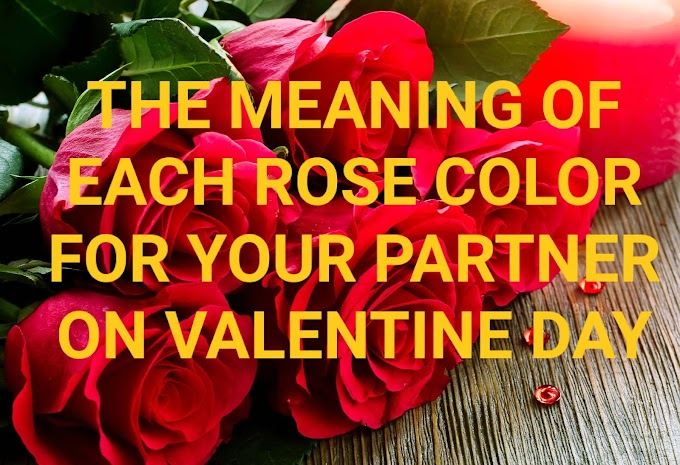 THE MEANING OF EACH ROSE COLOR FOR YOUR PARTNER ON VALENTINE DAY