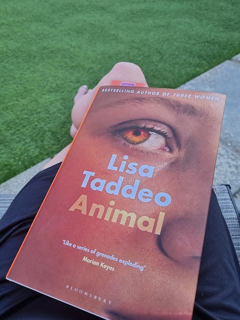animal-lisa-taddeo